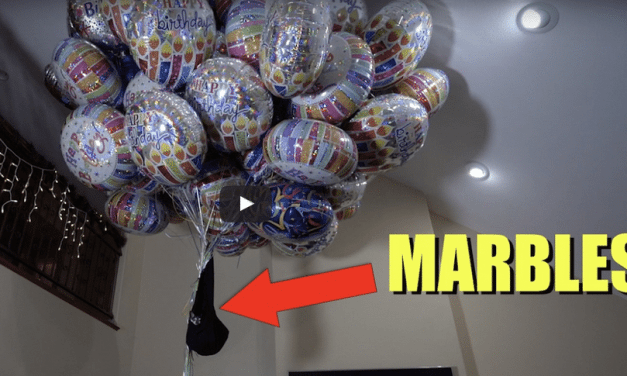 How Many Balloons Will It Take To Make Your Dog Fly