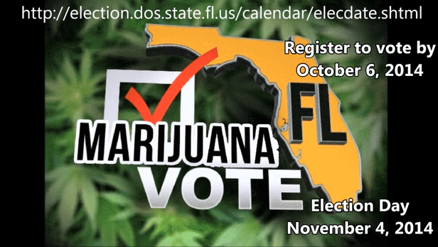 GET WISE: Medical Marijuana Vote in Florida