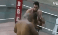 Cocky Fighter Gets KO'd