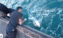 Guy Catches Huge Fish With No Fishing Pole