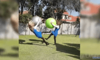 Best Fails of the Week 1 October 2015