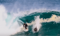 Pro Surfer Gets Snaked By A Dolphin Surfer