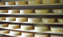 Woman Hires Hit Man, To Steal Cocaine, That Was Really Just Cheese