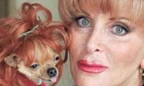 Woman Leaves 3 Mil' & a Miami Mansion to Her Dogs