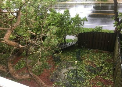 fence smashed by irma