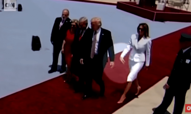 Melania Swats Trump's Hand – Internet Goes Crazy