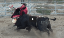 Bull Fight Challenge Goes Horribly Horribly Wrong