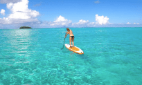 Take The Atlantic Coast Kayak and Paddle Board Eco Tour!