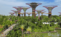 Singapore Travel Vacation Guide