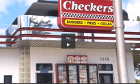 Rodents Take Over South Florida Checkers