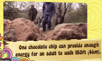 10 Sweet Facts About Chocolate