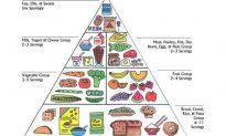 The Food Dodecagon