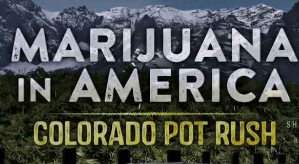 Marijuana in America Colorado Pot Rush