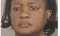 Prominent Business Woman Pleads Guilty To Tax Fraud In South Florida
